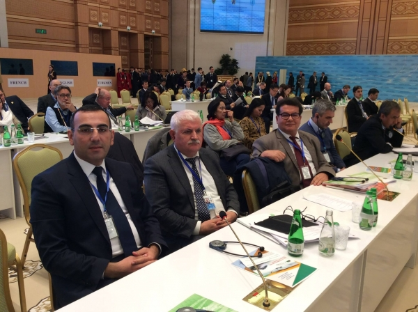 IEPF Chairman attended global conference on Sustainable Transport System
